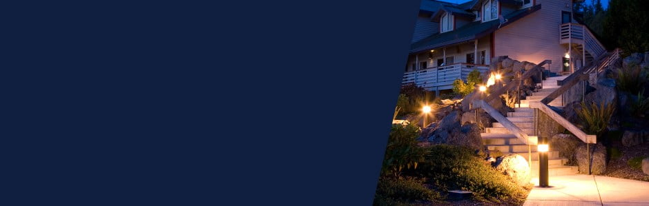 Zaczarowany ogród zEvergreen Lights