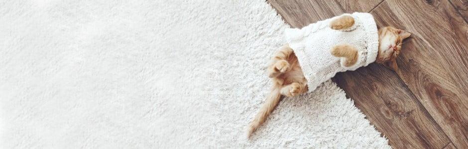 Dywany, które otulą Twoje podłogi ciepłem
