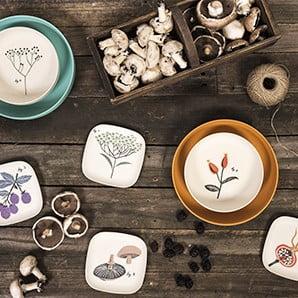 Fauna i flora w Twoim domu