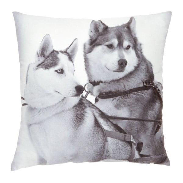 Poduszka Sled Dogs, 45x45 cm