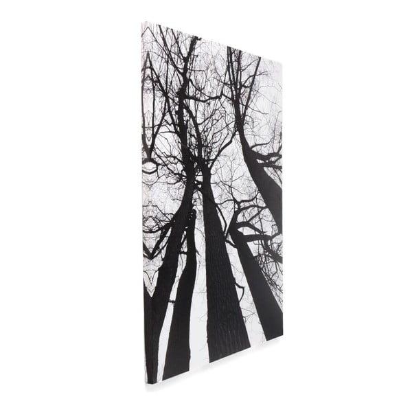 Obraz Tomasucii Winter Tree