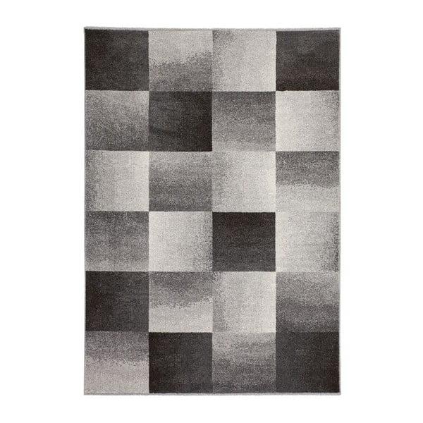 Dywan Fusion 810 Grey, 160x230 cm