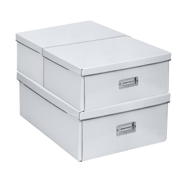 Komplet 3 pudełek Home White