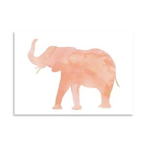 Plakat Americanflat Elephant Blush, 30x42 cm