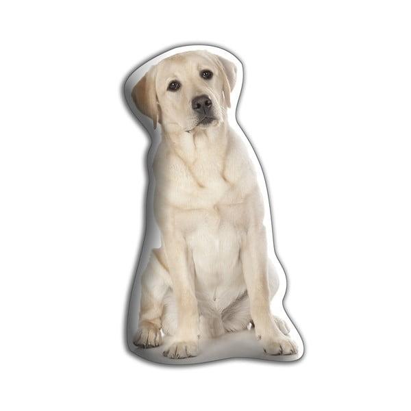 Poduszeczka Labrador retriever