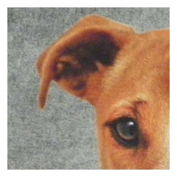 Dywanik Jack Russell 75x50 cm