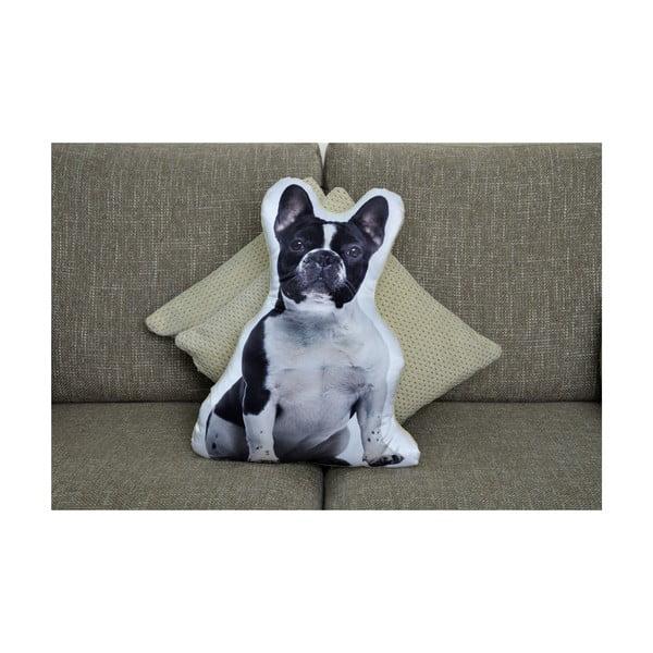 Poduszeczka Adorable Cushions Buldog francuski