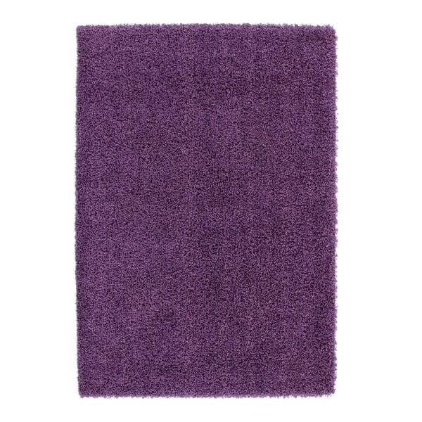 Dywan Guardian Violet, 160x230 cm