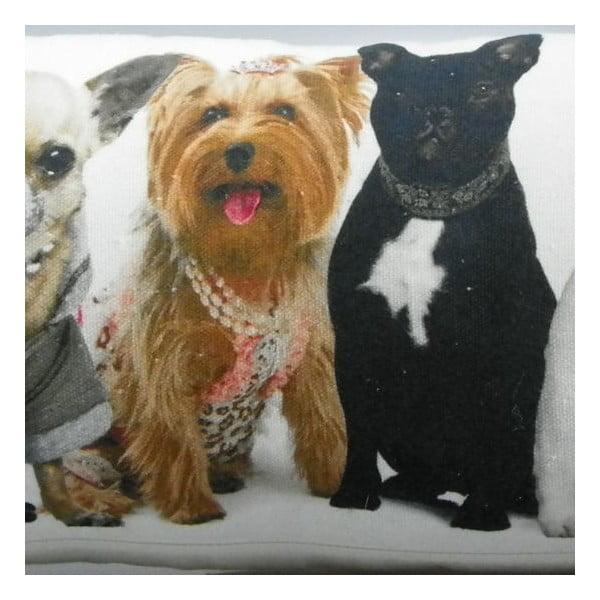 Poduszka Dogs 20x90 cm