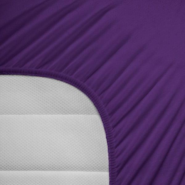 Fioletowe prześcieradło elastyczne Homecare, 160-180x200 cm