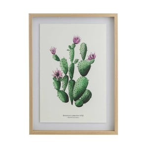 Obraz Tropicho Casas, 50x70 cm