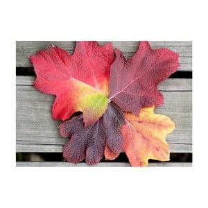 Obraz Jesień już przyszła, 45x70 cm