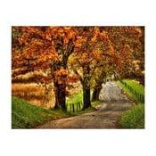 Obraz DecoMalta Road, 80x60cm