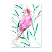 Plakat Cockatoo Pink