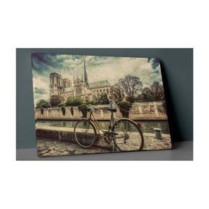 Obraz Insigne Canvaso Palejo, 60x40