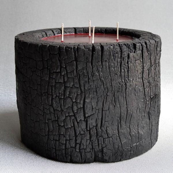 Palmowa świeczka Legno Dark o zapachu owoców egzotycznych, 180 godz.