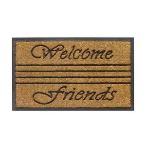 Wycieraczka Hamat Welcome Friends, 45x75 cm