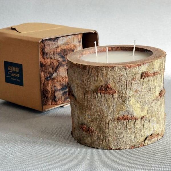 Palmowa świeczka Legno Ebony o zapachu wanilii i paczuli, 100 godz.