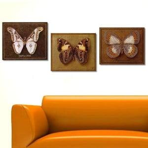Trzyczęściowy obraz Butterfly, 45x90 cm