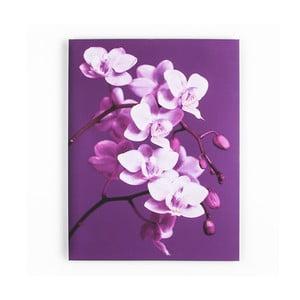 Obraz Graham & Brown Purpel Orchid,60x80cm