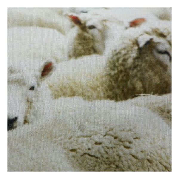 Poduszka Sheep 60x40 cm