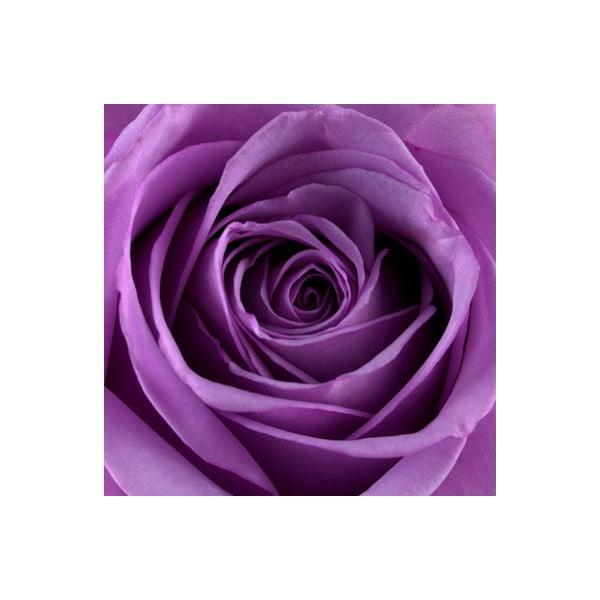 Zestaw 2 obrazów na szkle Róże, 20x20 cm