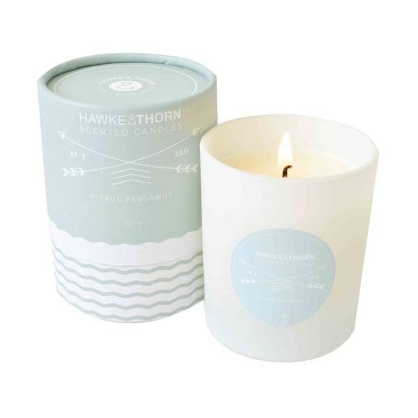 Świeczka Citris Bergamot, czas spalania 60 godzin
