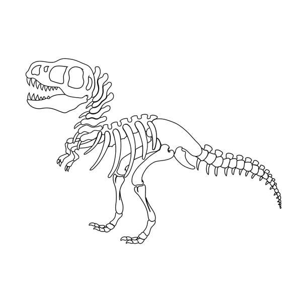 Naklejka ścienna T-Rex Skeleton