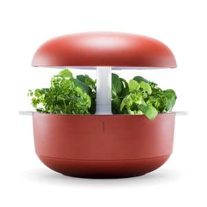 Czerwony inteligentny ogródek domowy Plantui 6 Smart Garden Red