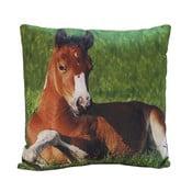 Poduszka Horse Appolo, 45x45 cm