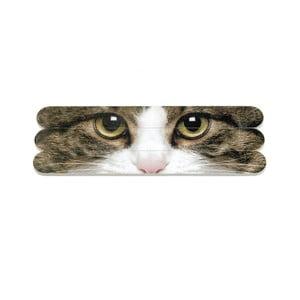 Zestaw 3 pilniczków Tabby Cat