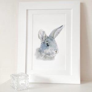 Plakat Bunny Portrait A4