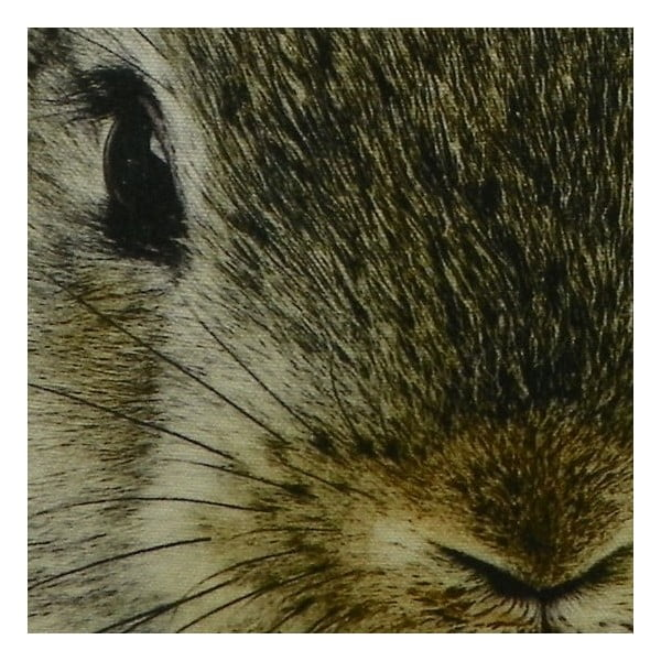 Poduszka Mars&More Brown Rabbit, 50x50 cm
