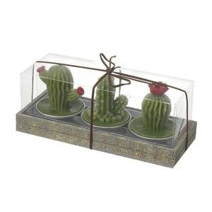 Zestaw 3 świeczek Heaven Sends Cactus