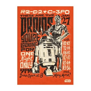 Plakat na blasze Star Wars Legends - Droids