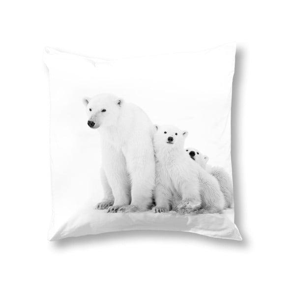 Poszewka na poduszkę Icebear, 50x50 cm