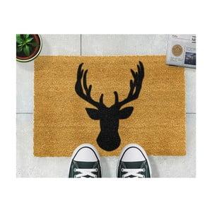 Wycieraczka Artsy Doormats Stagshead, 40x60 cm