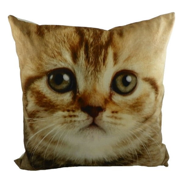Poduszka Cat Tabby, 50x50 cm