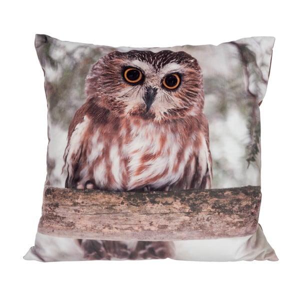 Poduszka Owl Velvet, 45x45 cm