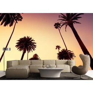 Tapeta wielkoformatowa Palmy o zmierzchu, 315x232 cm