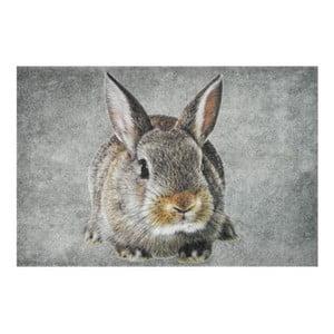 Dywanik Brown Rabbit 75x50 cm