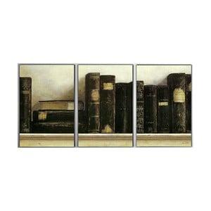 Trzyczęściowy obraz Old Books, 45x90 cm