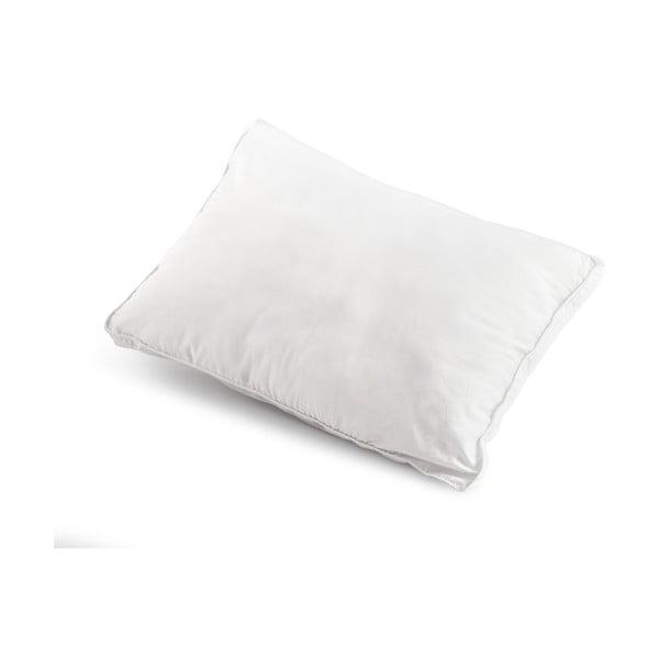 Poduszka z włókien kanalikowych Count, 50x70 cm