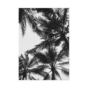 Plakat HF Living Botanic Palms, 21x30 cm