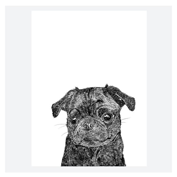 Plakat Olive the Black Pug, 30x40 cm