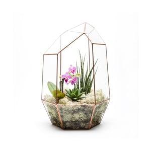 Terrarium z roślinami Supersize Gem, w jasnej ramce