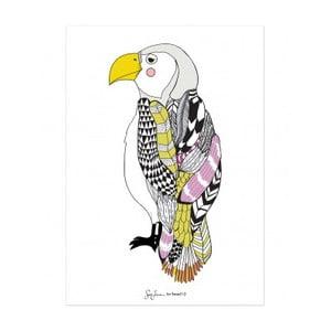 Plakat Bird
