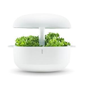 Biały inteligentny ogródek domowy Plantui 6 Smart Garden White