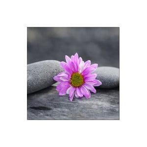 Obraz na szkle Kwiaty I, 20x20 cm