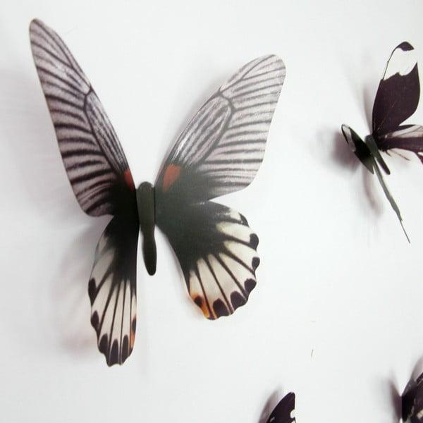Naklejki motyle 3D Walplus Streak Butterfly Black